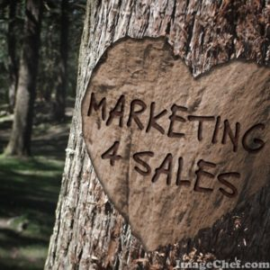 marketing-tree-trunk